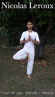 Nicolas Leroux Professeur de yoga à l'institut de gestion du stress Aubagne