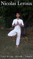 Nicolas Leroux Professeur de yoga à l'institut de gestion du stress Aubagne la Detrousse